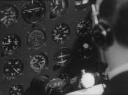 Flygare i trimning