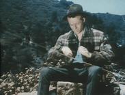 Algots – vilda västern