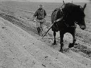Grytnäs socken. En hembygdsfilm om jordbruket