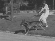 Stillbild från filmen Hur behandlar du din hund som visar en kvinna som är ute med sin hund i koppel