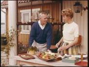 Husmors filmer hösten 1961