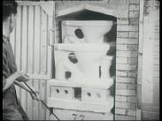 Toalettens historia