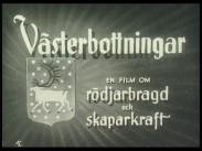 Västerbottningar – en film om rödjarbragd och skaparkraft