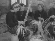 Veckorevy 1954-03-15