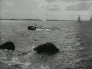 Svenska Biografteaterns veckorevy 1916-08-14